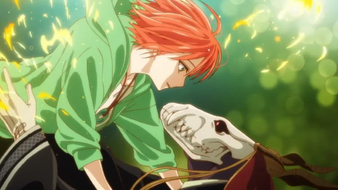 the ancient magus' wife